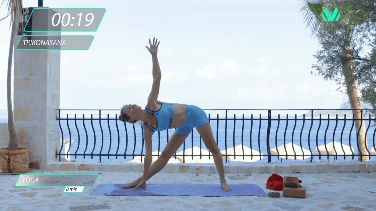Hamstrings Opening Sequence